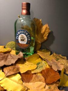 Ginfektion, Plymouth Gin mit Laub. Herbstlicher Gin
