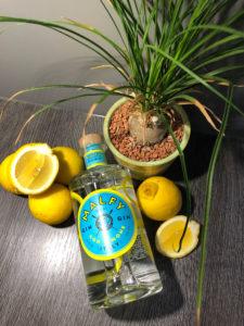 Malfy con Lemone im Test bei Ginfektion Zitronengin Testbericht
