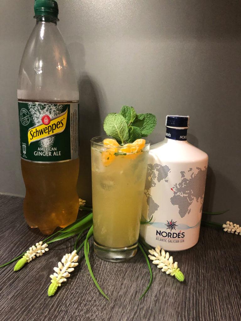 Atlantik Flar im Glas mit dem Nordes Atlantic Gin und Schweppes Gingerale by Ginfektion